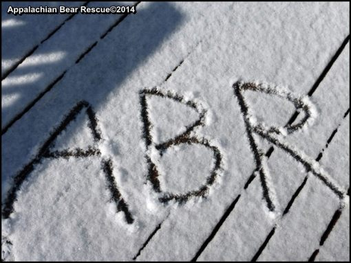 """ABR"" in snow"