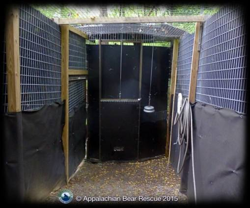 corridor to acclimation pen